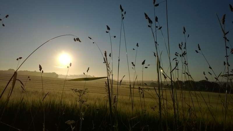 Sun rise over Hendersyde
